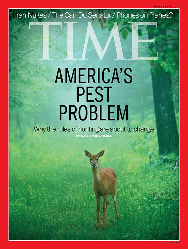 Los ciervos, potenciales víctimas de la caza ecologista